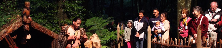 Maori carver, Tamaki Heritage Experiences. Image: Destination Rotorua Marketing